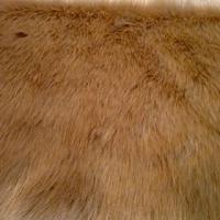 teddy faux fur fabric